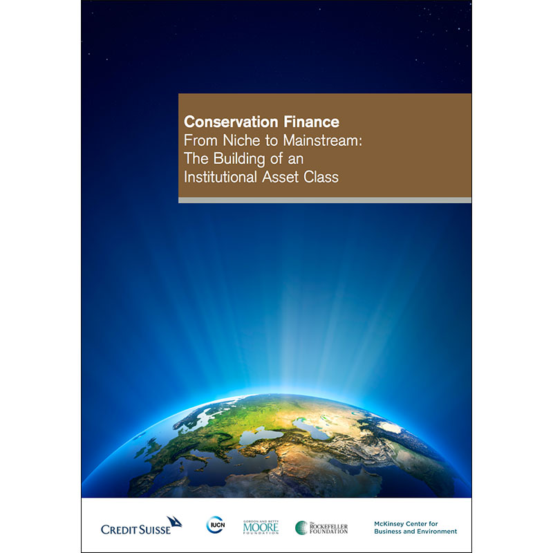 Conservation Finance From Niche to Mainstream: The Building of an Institutional Asset Class